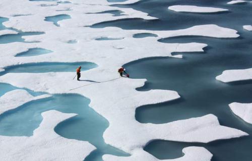 investigadores predicen que no habra hielo en el artico en el 2016  182868_1